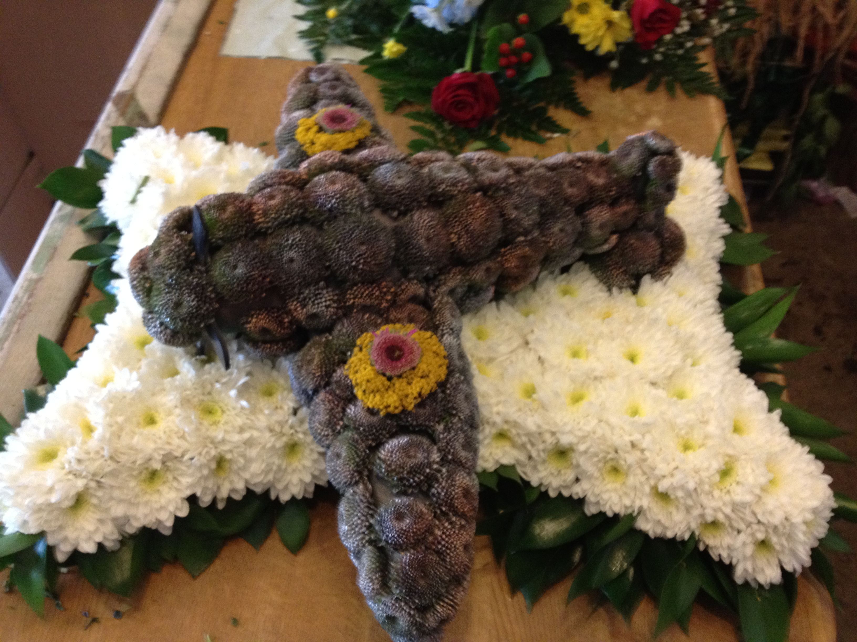 Special funeral tributes special funeral tributes izmirmasajfo Gallery